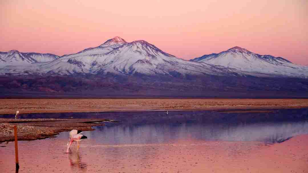 Patagonia, Atacama, Chiloé