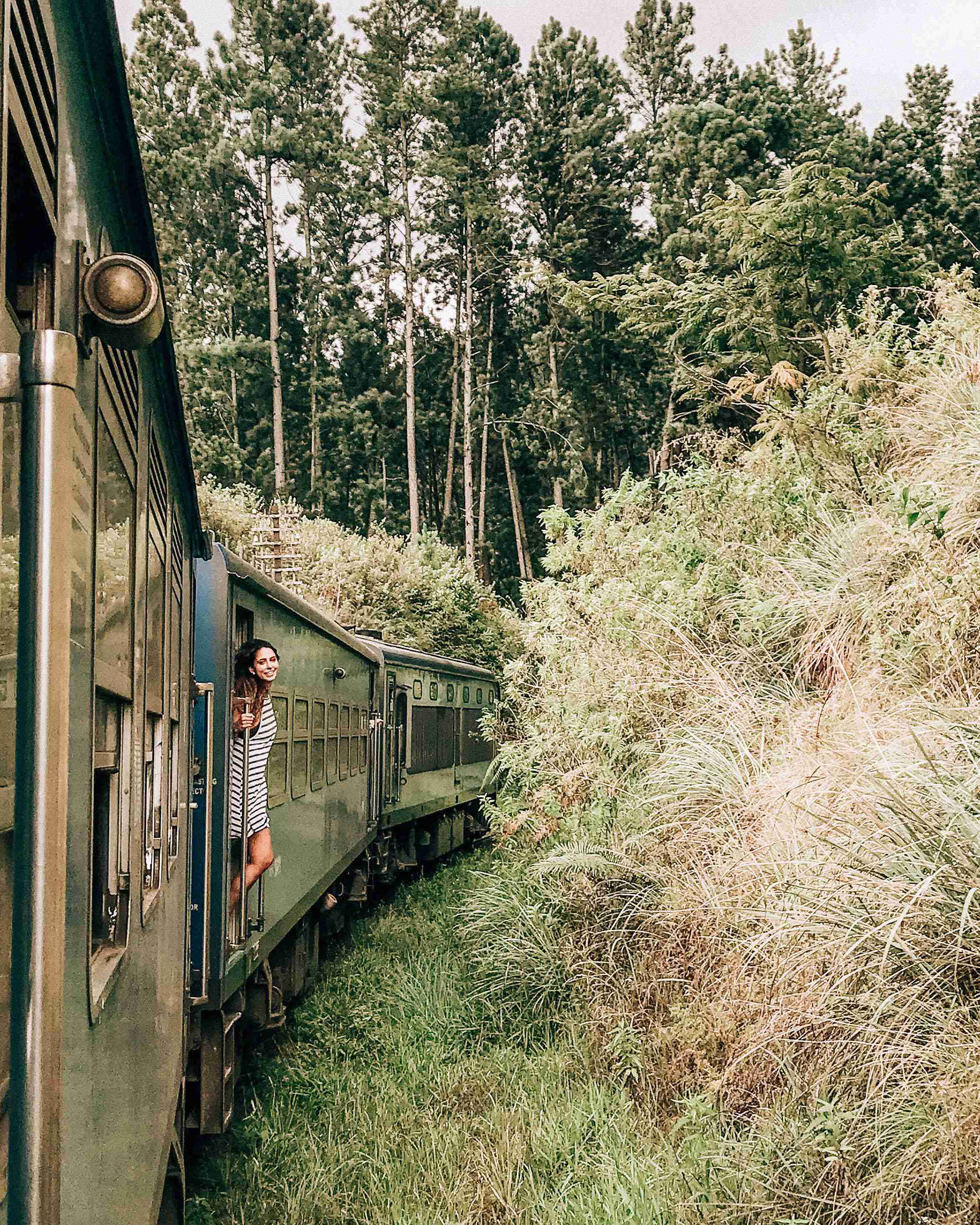 train to ceylon tea trails