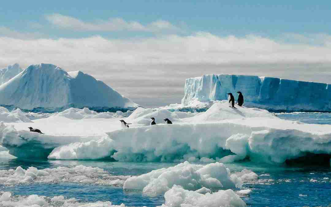 Why Antarctica Was My Favorite Trip of All Time
