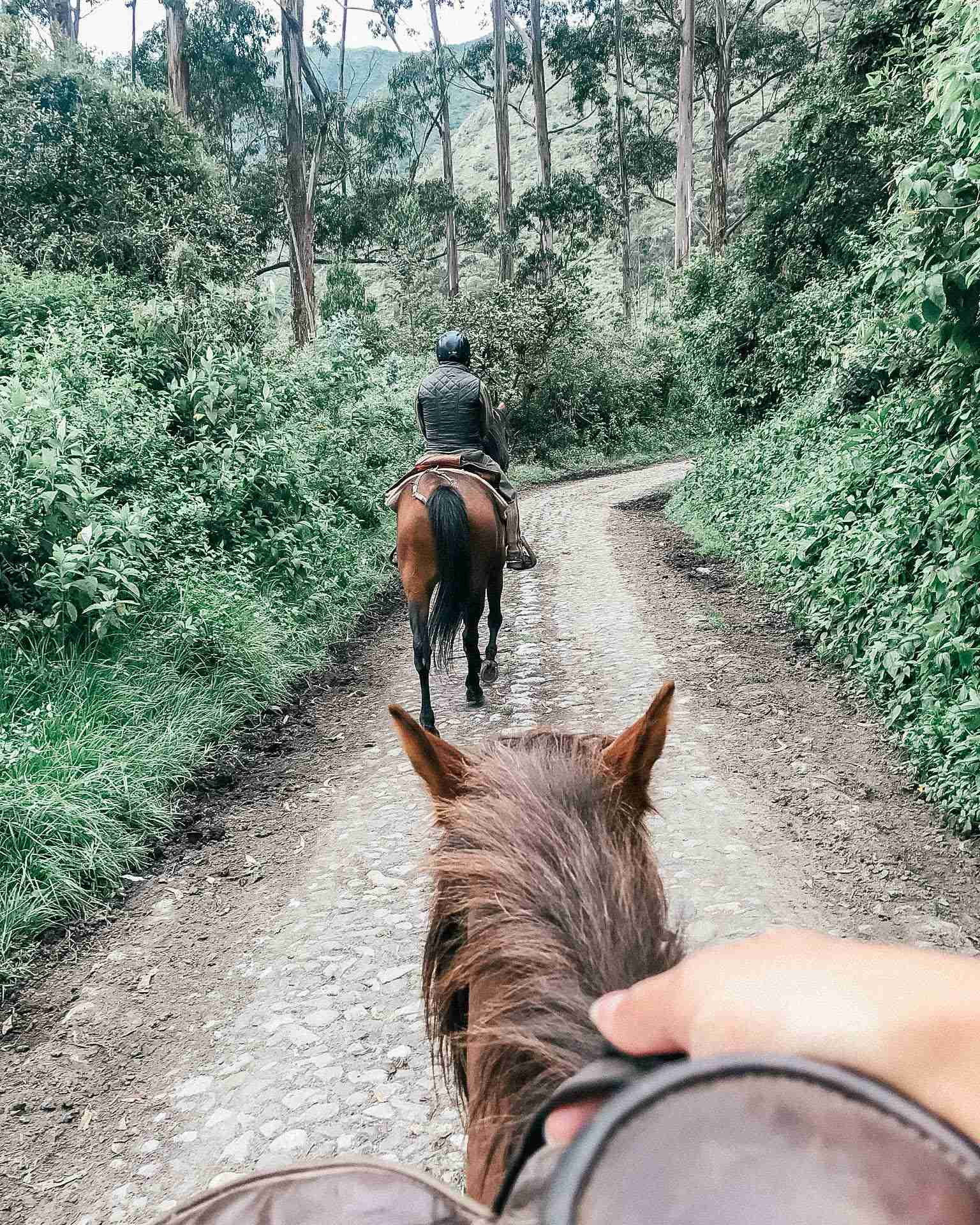 Horseback riding at Hacienda Zuleta