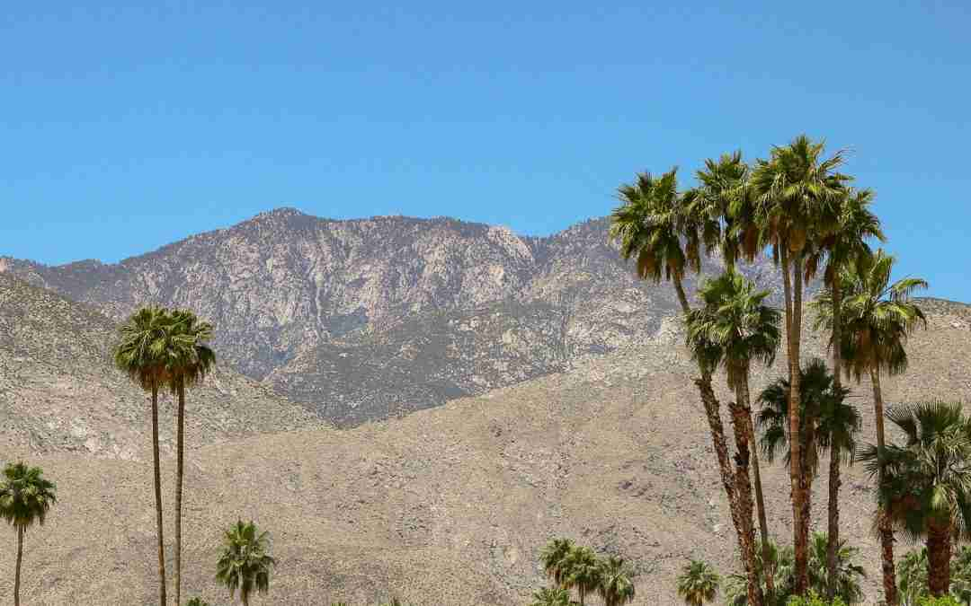 Explore Greater Palm Springs in Southern California