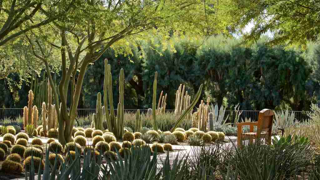 Sunnylands Center and Gardens, Rancho Mirage, Greater Palm Springs